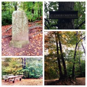 Hiking trip to Humbergturm (Humberg Tower)