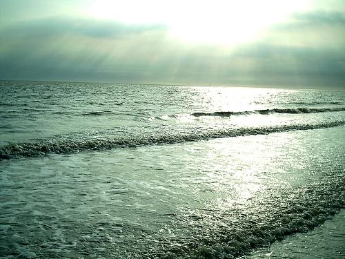 nordsee-waddensea-northsea-2100929-l