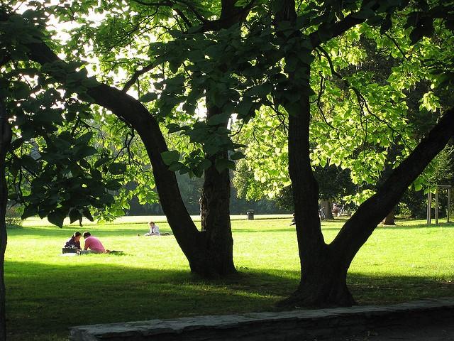 Grüneburgpark-Frankfurt