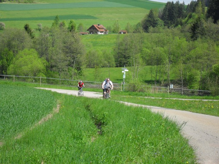 Family Fun in the Black Forest