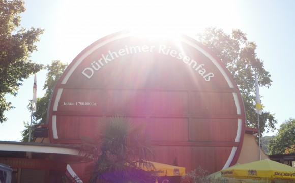Pfalz_Weinstrasse_Bad_Duerkheim_Drachenfels_Suedfels_Aussicht_1