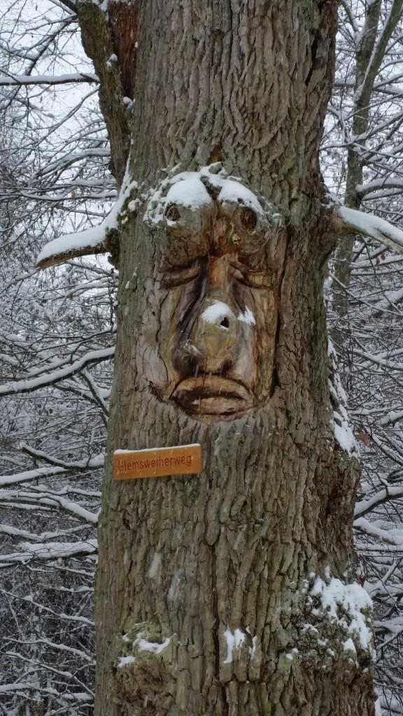 Stu tree carve