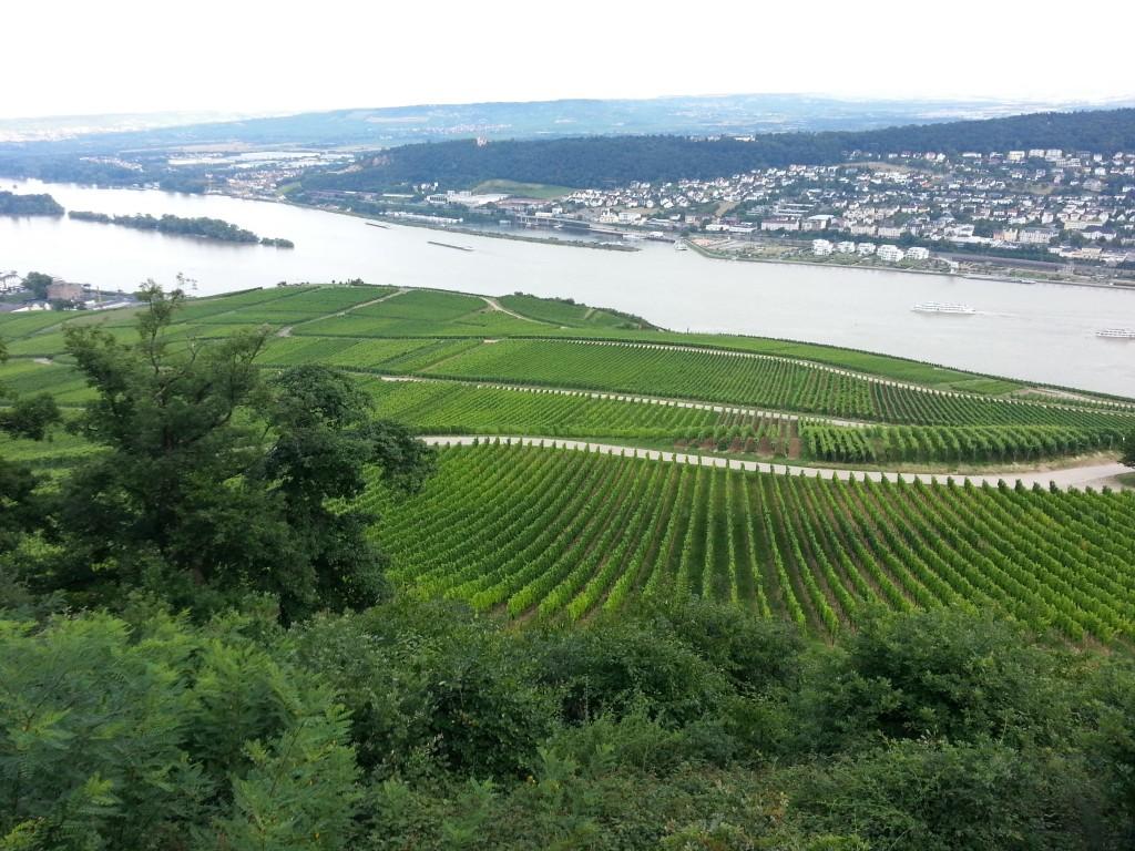 Rudesheim Photo 4