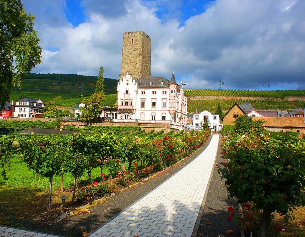 Rudesheim Photo 6