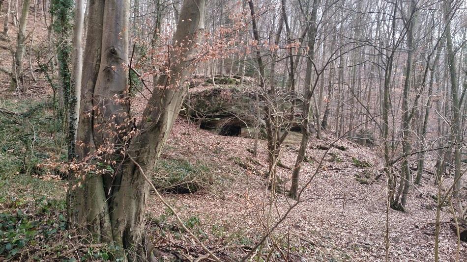 Hidden Ritual Probable bear cave