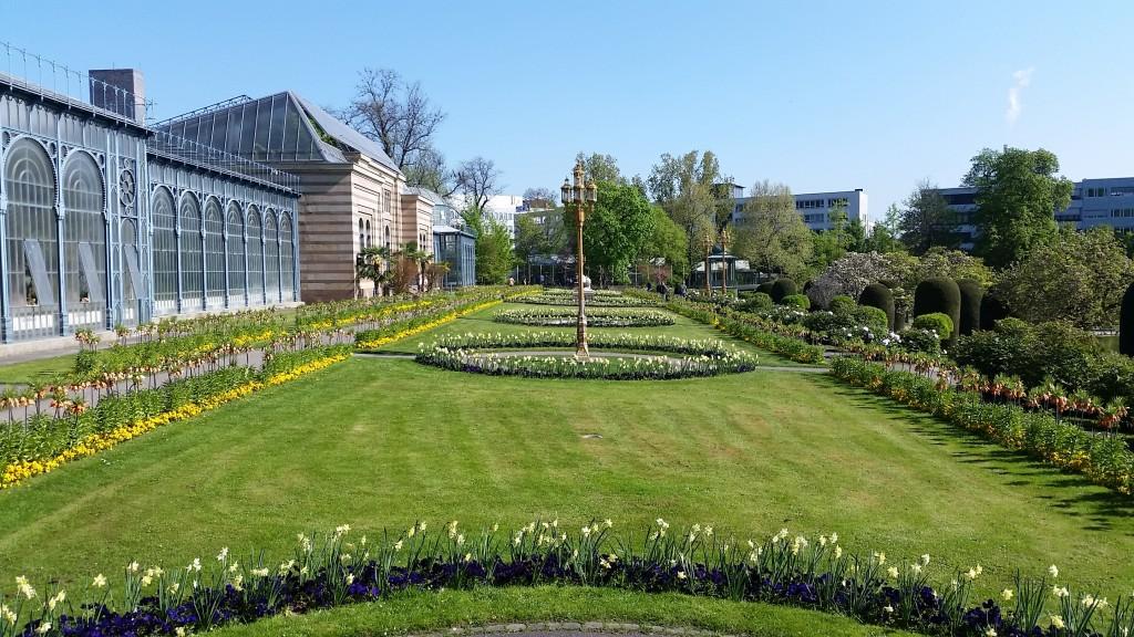 Wilhema garden