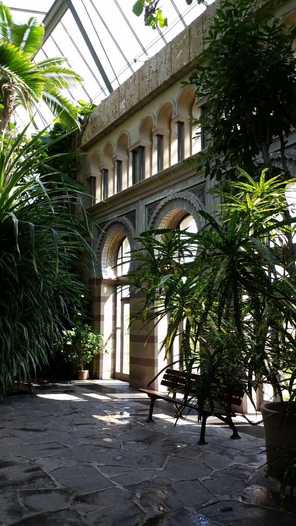 Wilhema garden arboretum