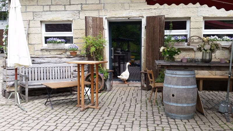 Eselsmühle duck in door