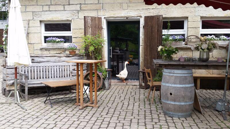 Eselsmühle duck in door