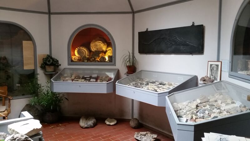 Eselsmühle in shop with rocks