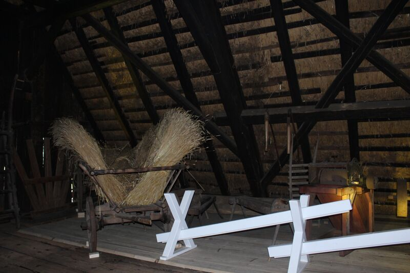 Black Forest in attic