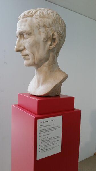 Lime Julius Caesar