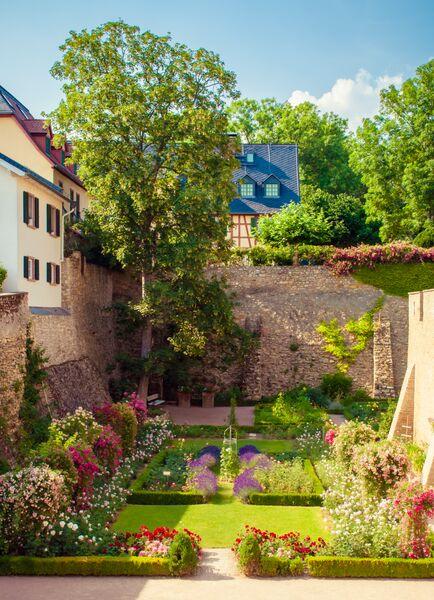 Elector's Castle Garden 2