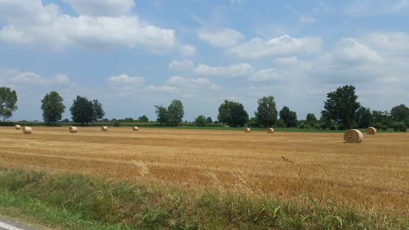Emilia-Romagna, Italy Parma countryside Wendy