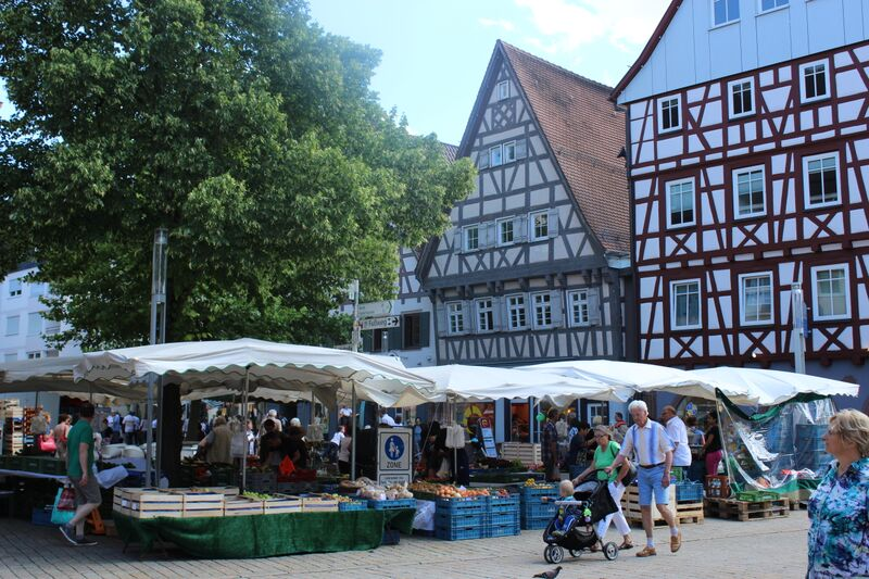 Medieval Madness farmers market view Wendy