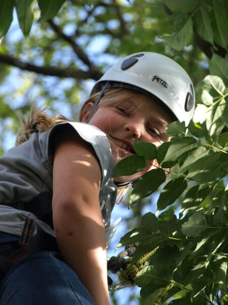 tree climbing Uli Eder Mössingen's Apple Week