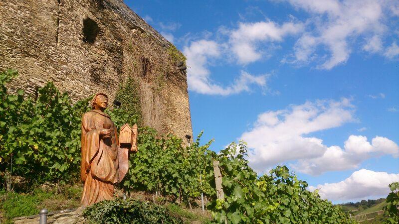 Kelly Rhine River St Goar A Quick Ride on the Rhine
