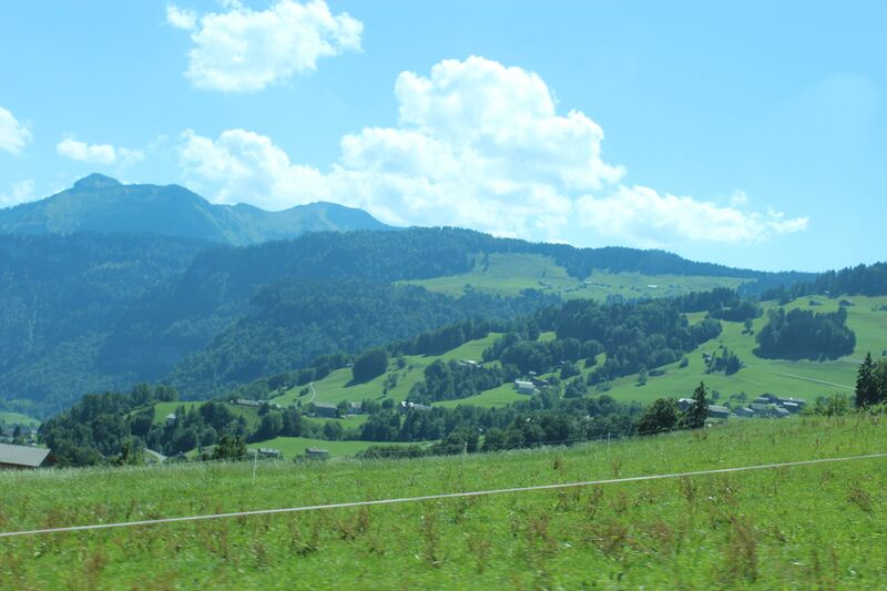 Wendy Austrian Alpine Cheeese Bregenzerwald 2