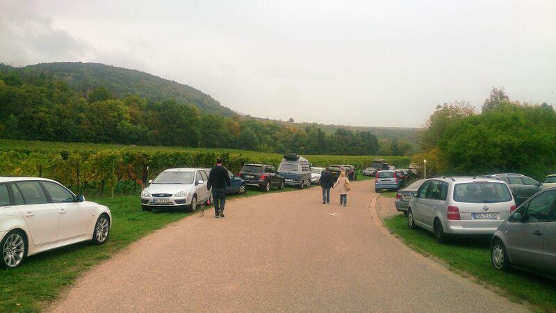 parking Kelly Edenkoben Wine