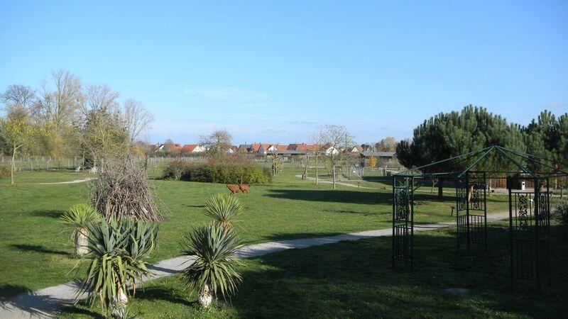 Farm grounds Kelly Straussenfarm Mhou – An Ostrich Farm