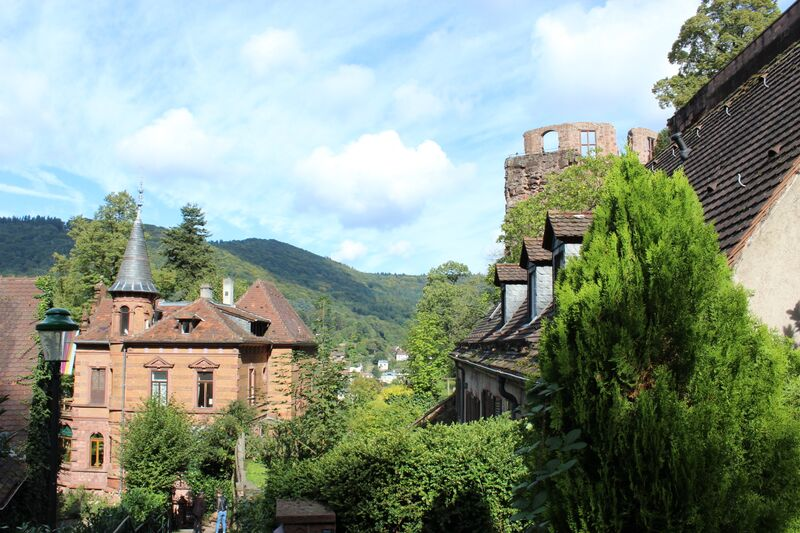 Heidelberg castle view of hill 5246 Wendy A stroll through Heidelberg