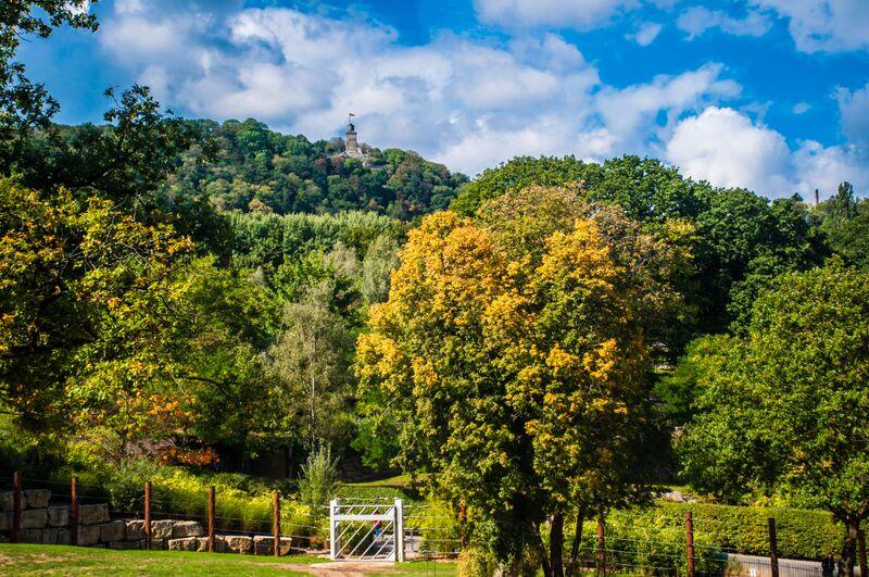 castle Gemma Opel Zoo