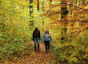 picture of girls hiking Wendy Walk on the Wald Side