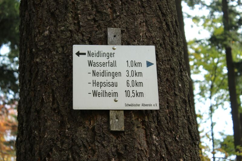 sign on tree IMG 5549 Wendy Walk on the Wald Side