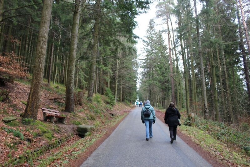 Hike Wendy Winter fun in the Black Forest