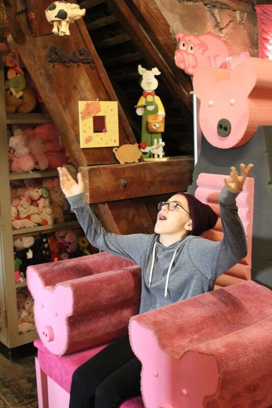 Pig room Wendy Where Pigs Fly!