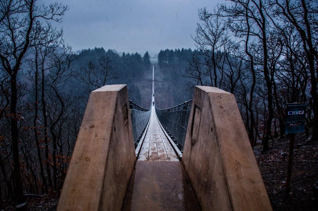 -0406 Gemma Geierlay Germany's Longest Suspension Bridge