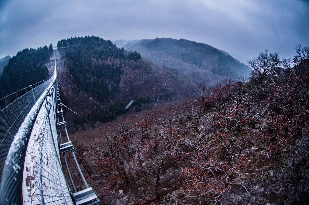 -0416 Gemma Geierlay Germany's Longest Suspension Bridge