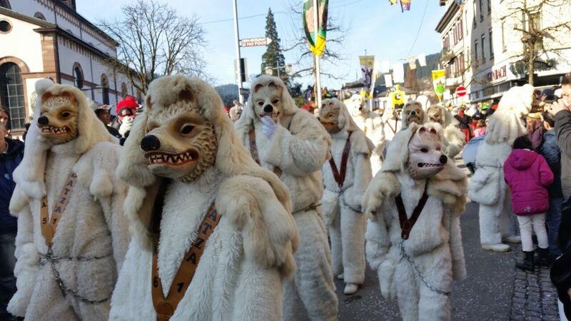 145410 dog costumes Gemma Schramberg Fastnacht Boat Race and Parade