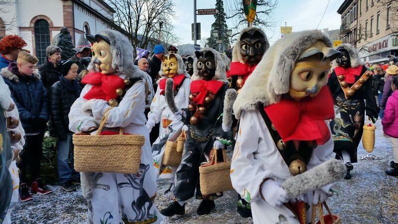 154401 cat costumes parade Gemma Schramberg Fastnacht Boat Race and Parade