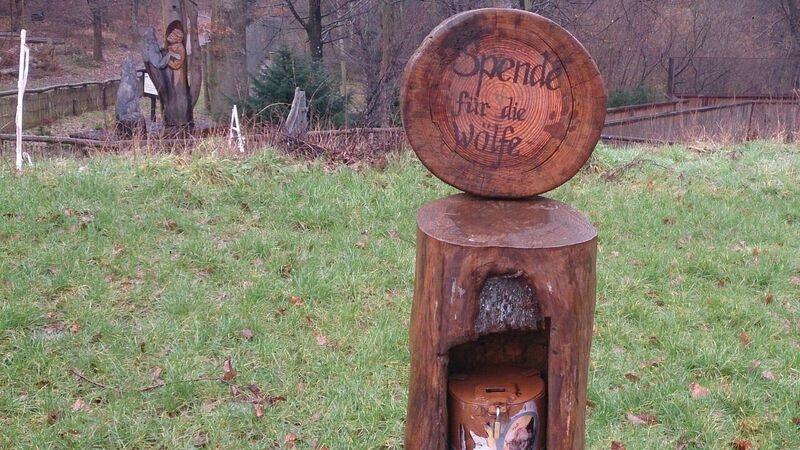 Donation box Kelly Merzig Wolf Park 16