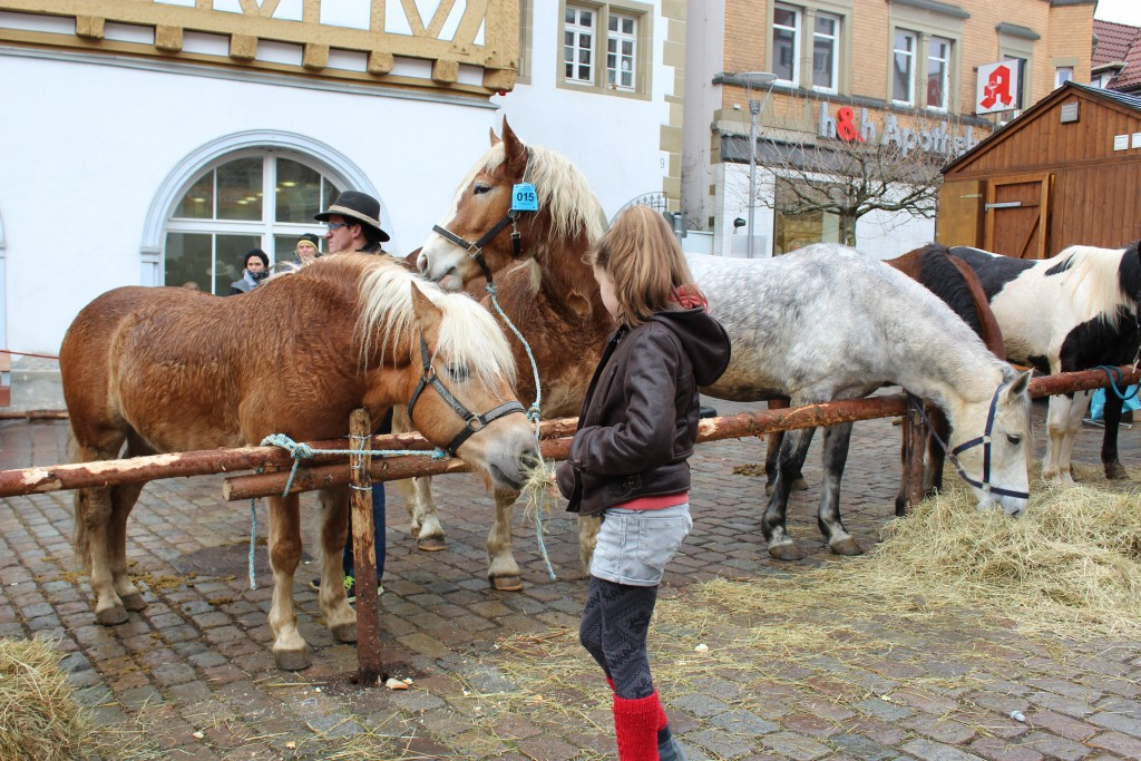Girl on horse Wendy Leonberg Horse Market 16