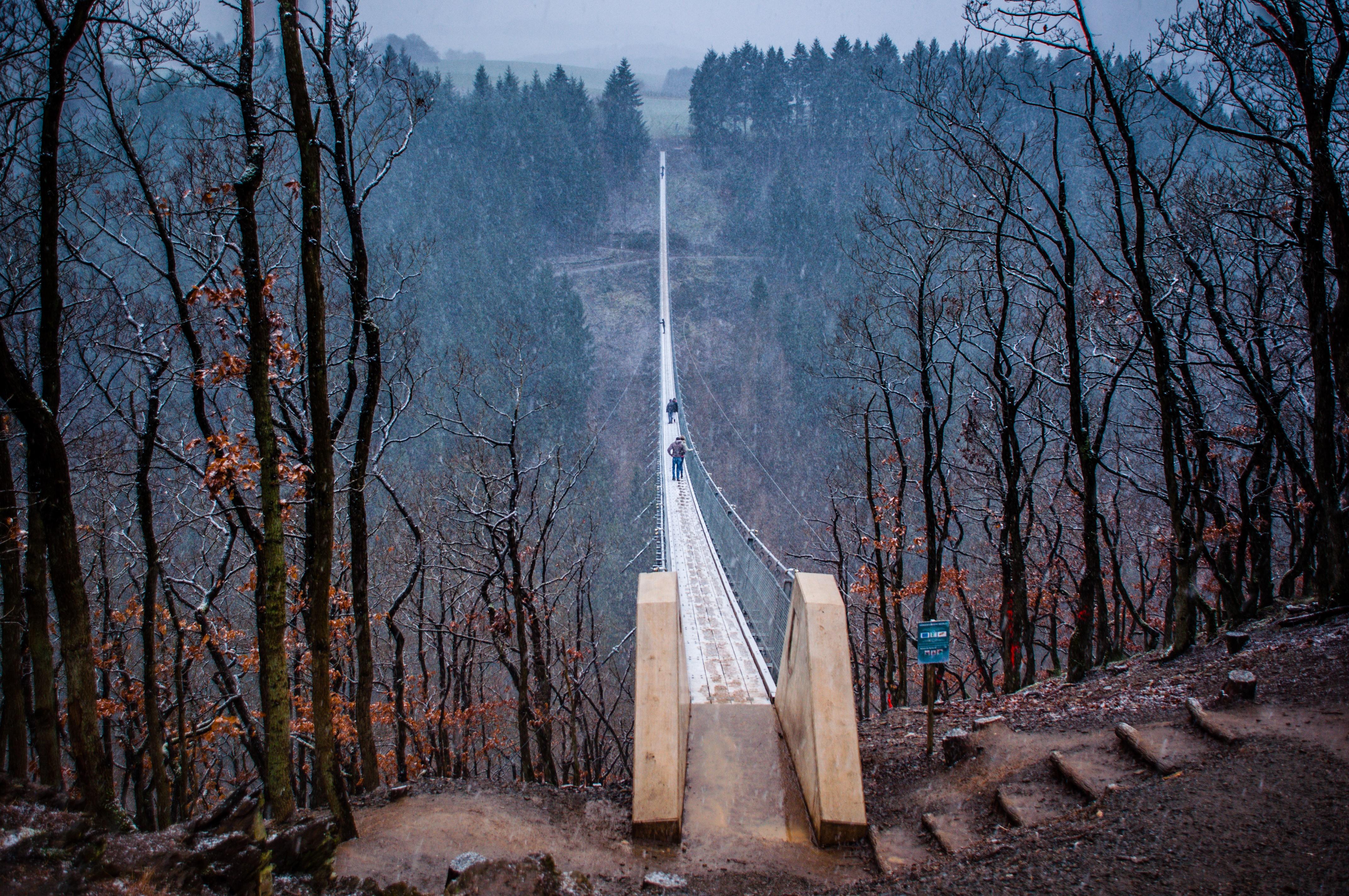 Geierlay, Germany's Longest Suspension Bridge   Travel, Events ...