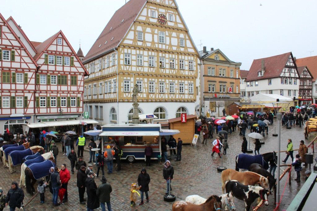 Main Square Wendy Leonberg Horse Market 16