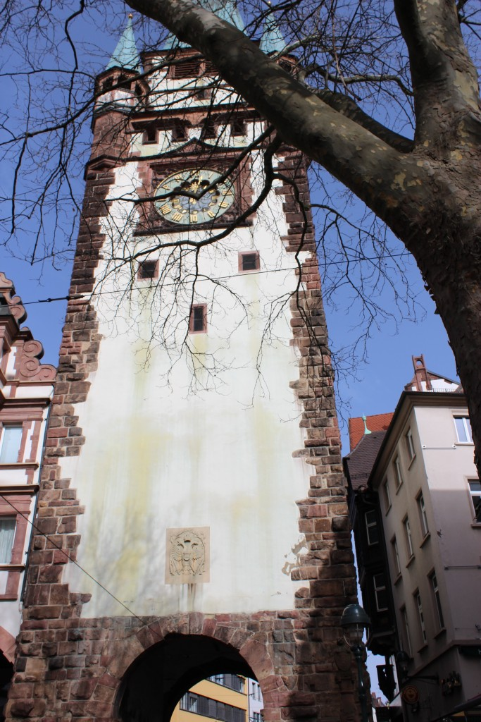 munsterplatz Wendy Five things to do in Freiburg im Breisgau 16