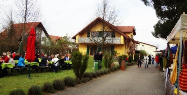 Photo 9 Freinsheim Blütenfest Cheryl 16