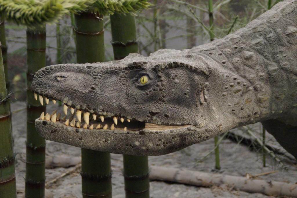 prehistoric-times-1257092_1920 Pixabay Efraimstochter Amusement Park 16