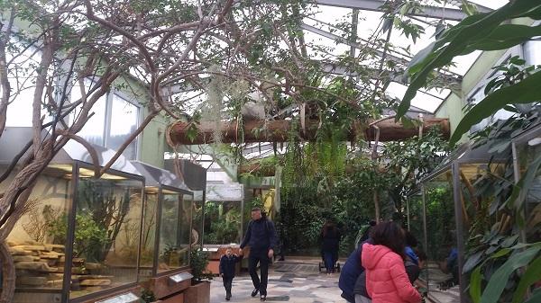 Jungle Gemma Frankfurt Zoo Animals and the City May 16