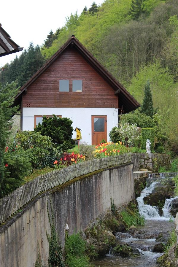 MIG - Black Forest view Wendy Wine Walks near Stuttgart May 16