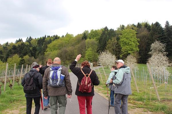 MIG - Jutta follow me Wendy Wine Walks near Stuttgart May 16