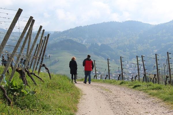 MIG - family walk Wendy Wine Walks near Stuttgart May 16