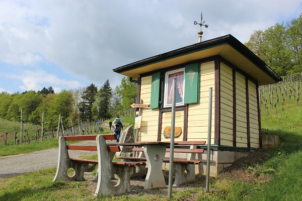 MIG - wine house Wendy Wine Walks near Stuttgart May 16