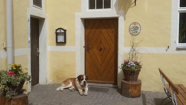 MIG - Berg beer Wendy Beer Culture and the town of Ehingen June 16