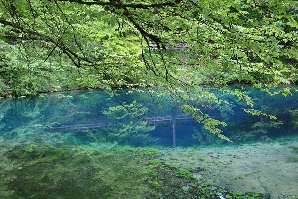 blue pool 2 Wendy The Blue Waters of Blaubeuren June 16