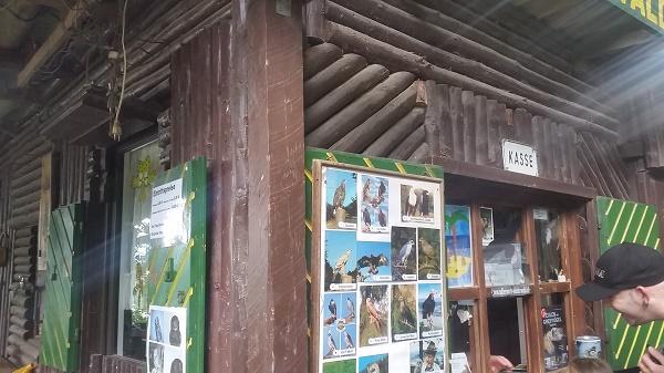20160604_161014 Gemma Niederwald Eagle Sanctuary July 16